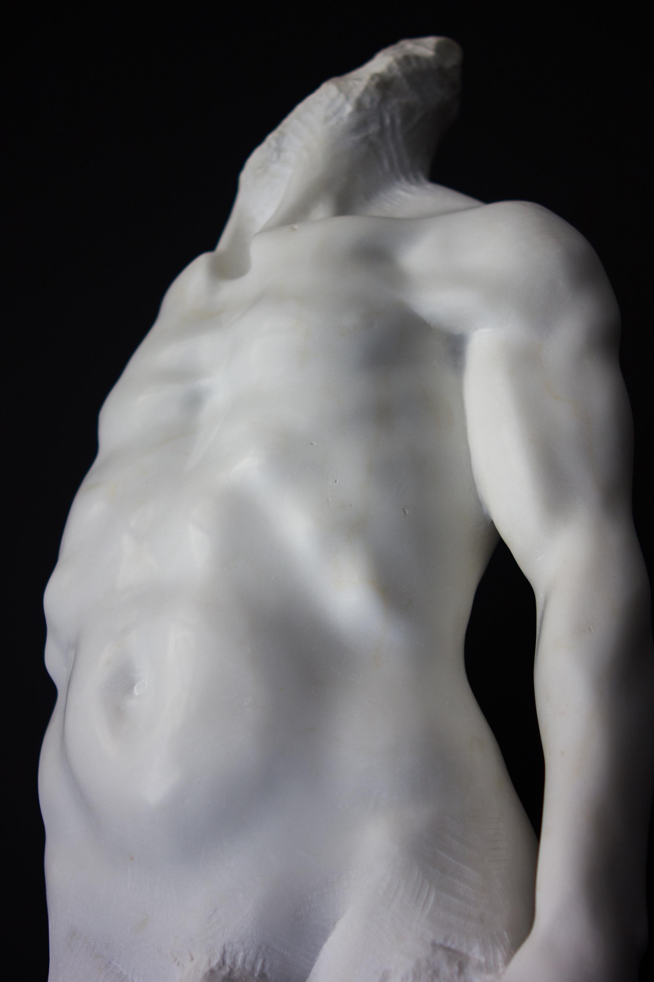 Gestalt-8.jpg