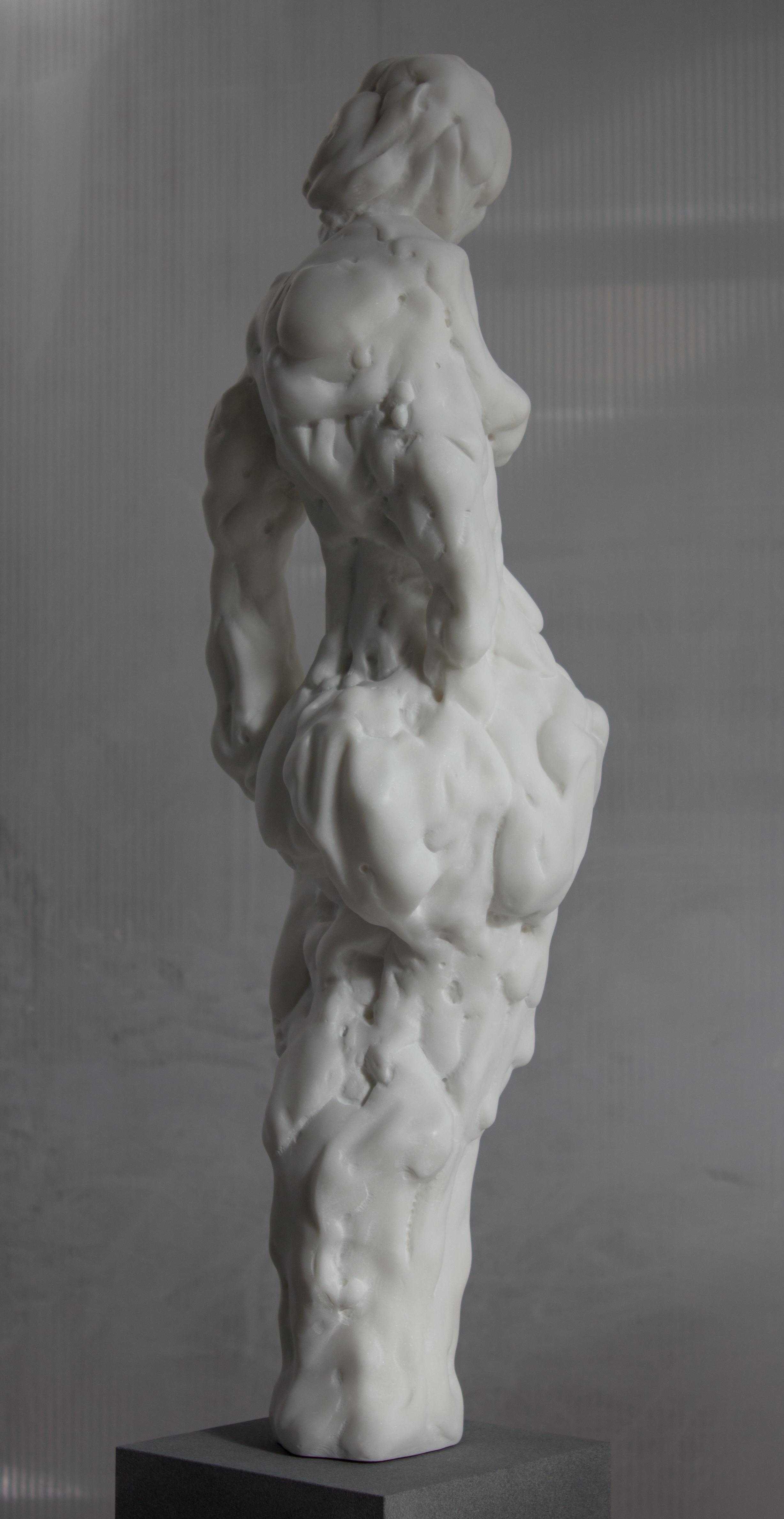 Idol-6.jpg