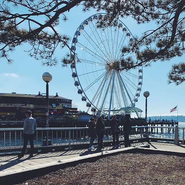 Thanks for the beautiful day, Seattle! 🌞💕
