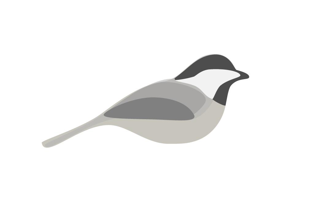 bird3_Chicadee.png