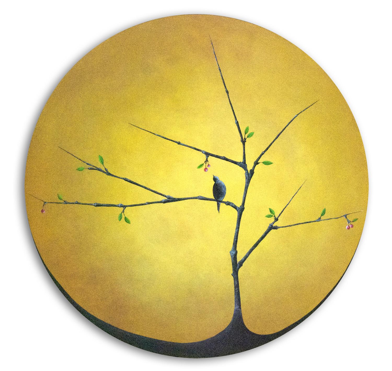 10_yellow-circle_cherries.jpg