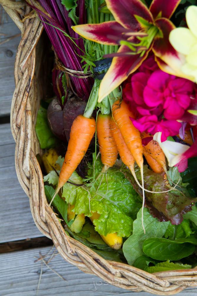 JBailie-veggies-081312-1056.jpg