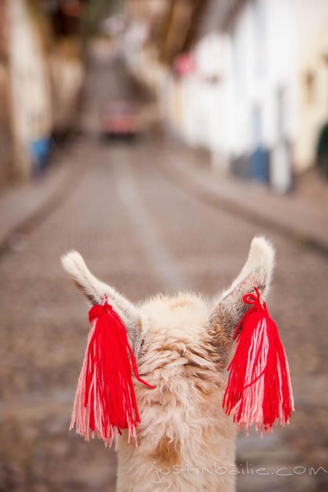 jbailie-cusco-2012-9601.jpg