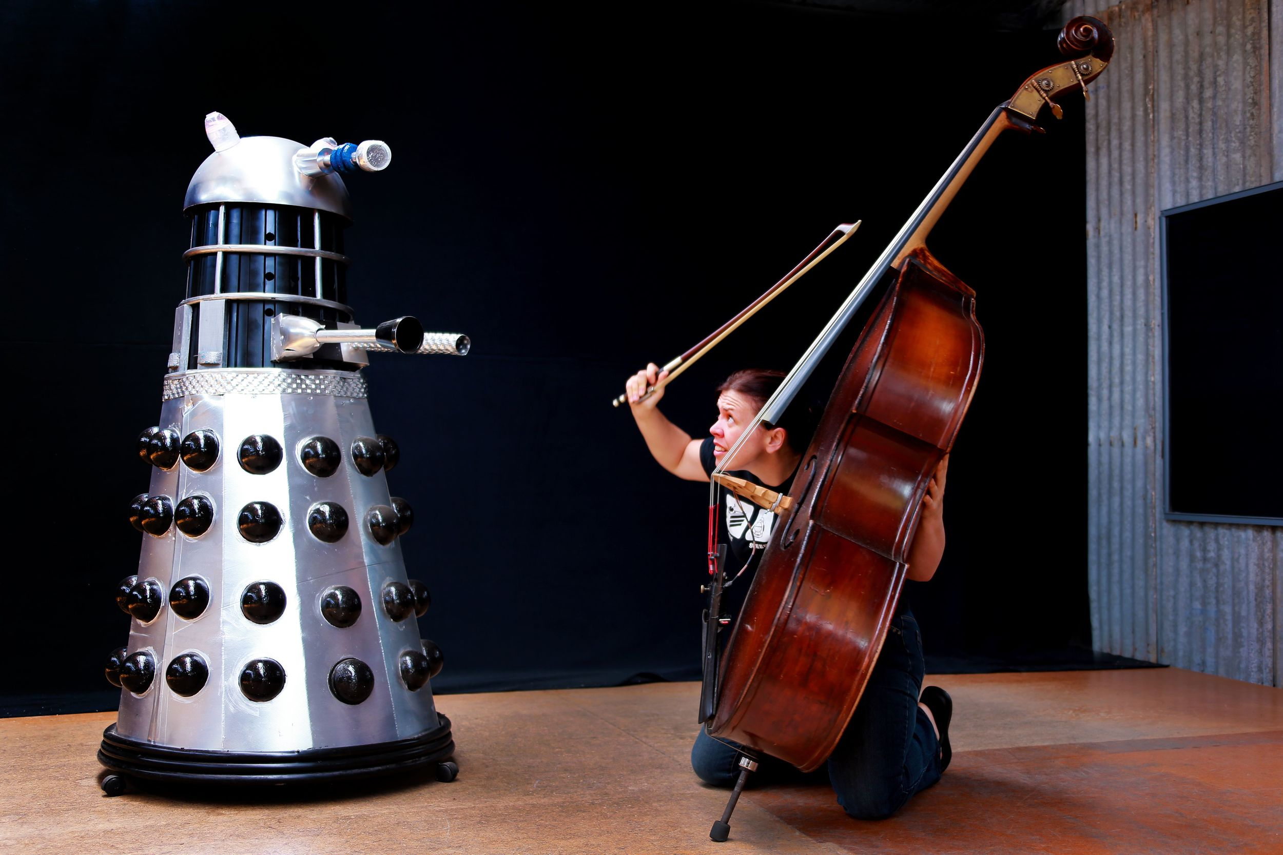 My sister and brother-in-law have a pet Dalek- go figure!