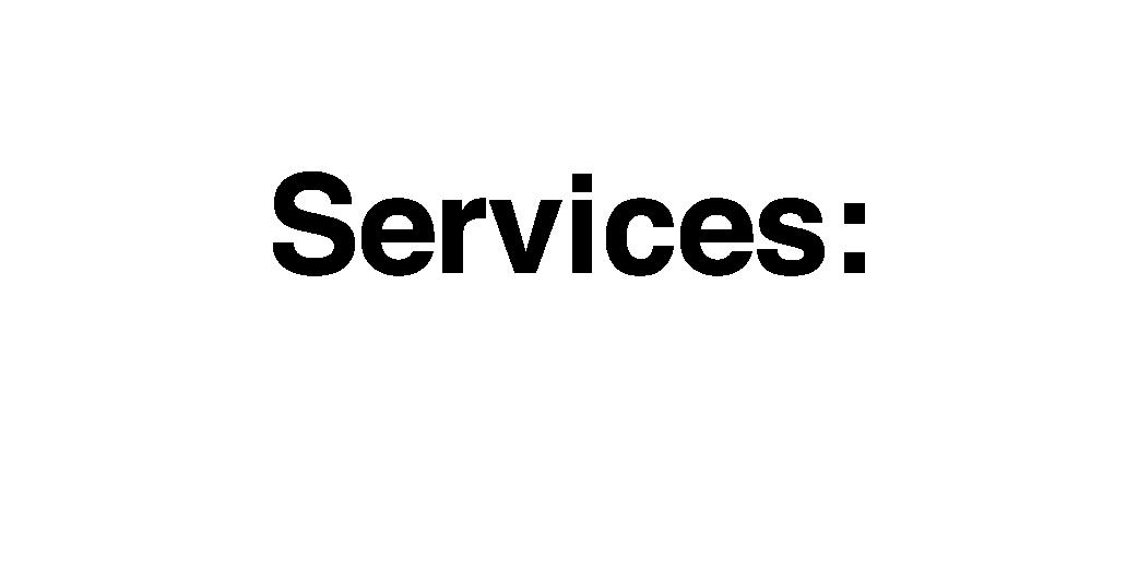 srv.png