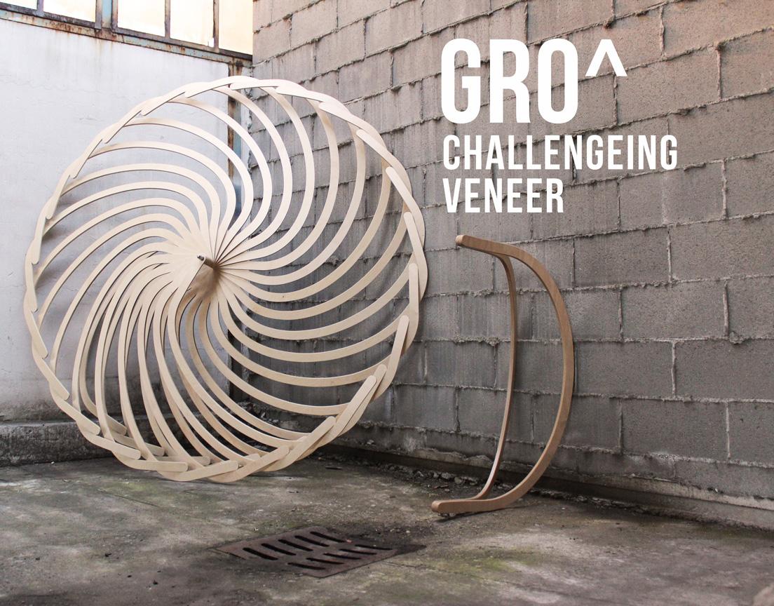 challengeing-veneer-with-fritz.jpg