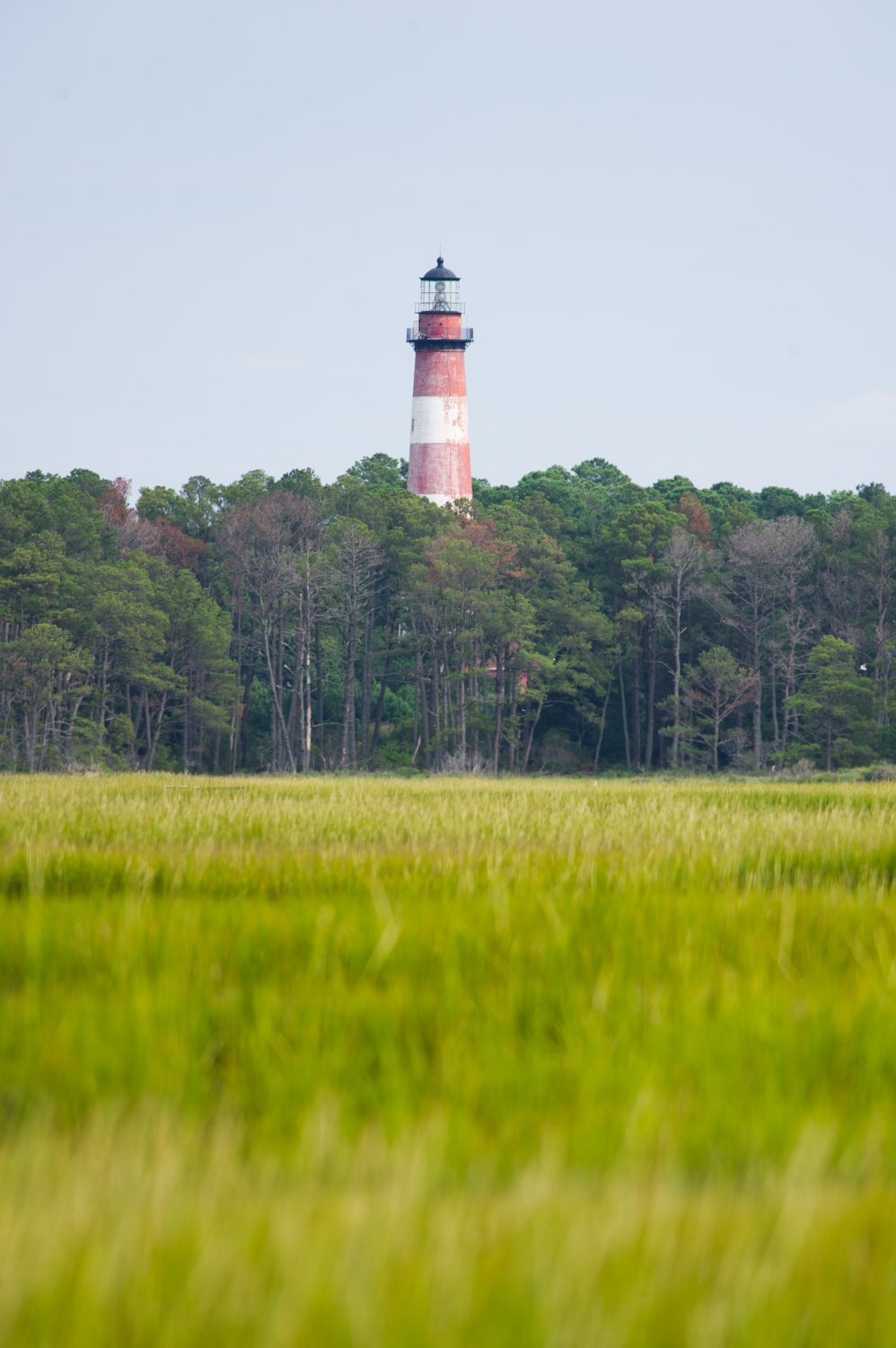 A view from our dock out to the red & white striped Chincoteague Lighthouse