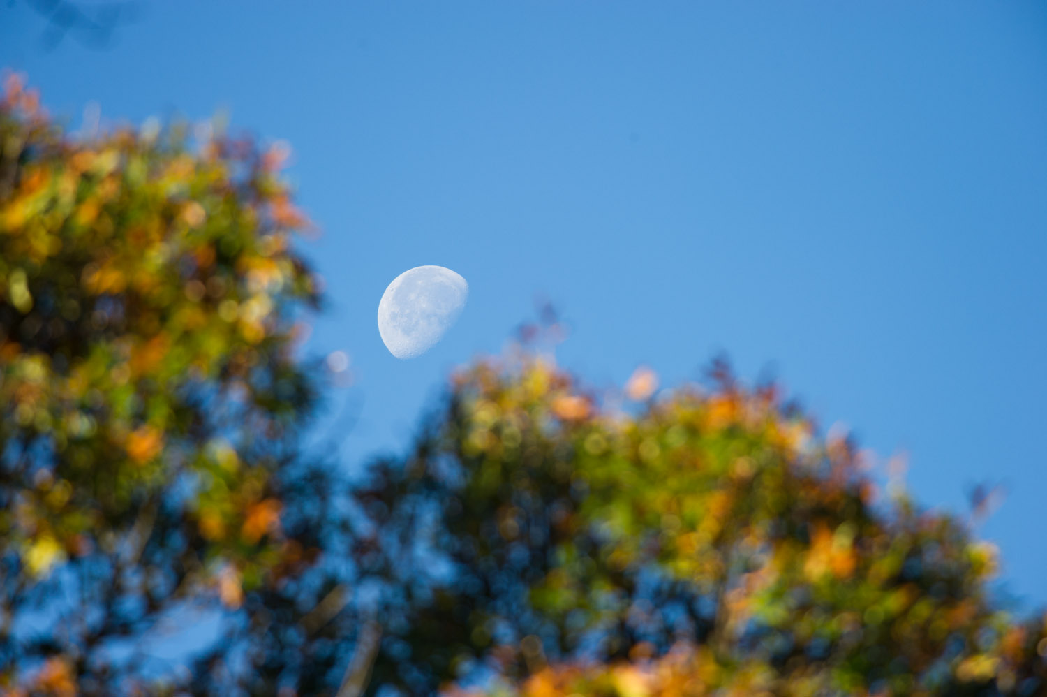 When the moon is visible during the day it can make for some interesting compositions.