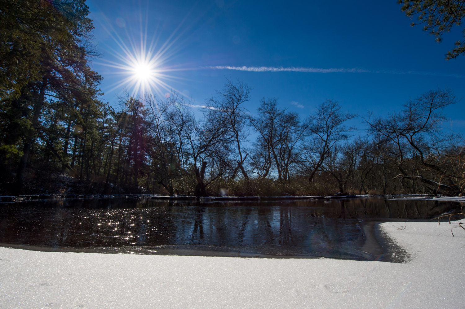 The Mullica River at Wharton State Forest in the NJ Pine Barrens.