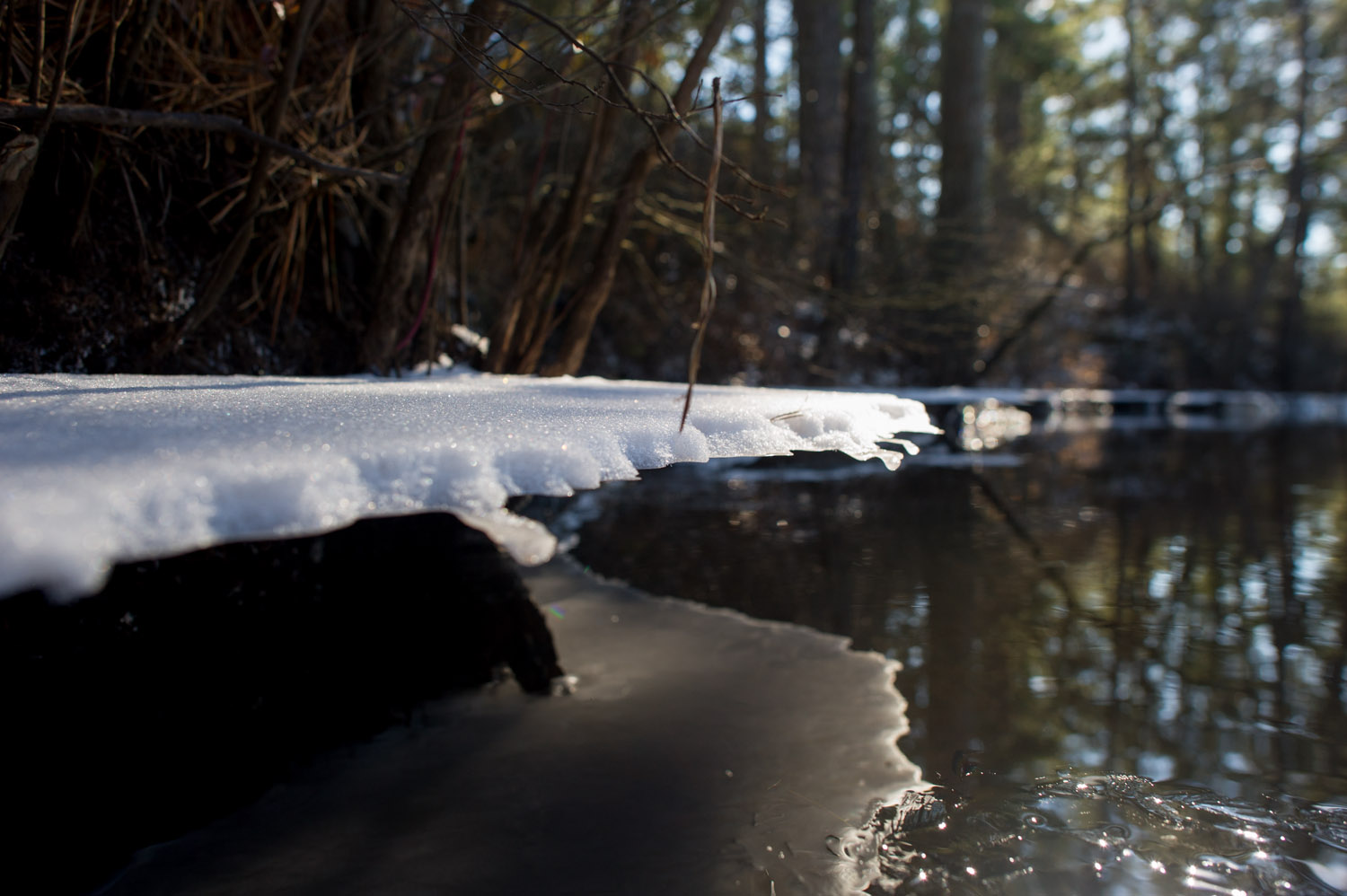 Not sure how this happened but a shelf of ice and snow hung a good foot over the river bank.