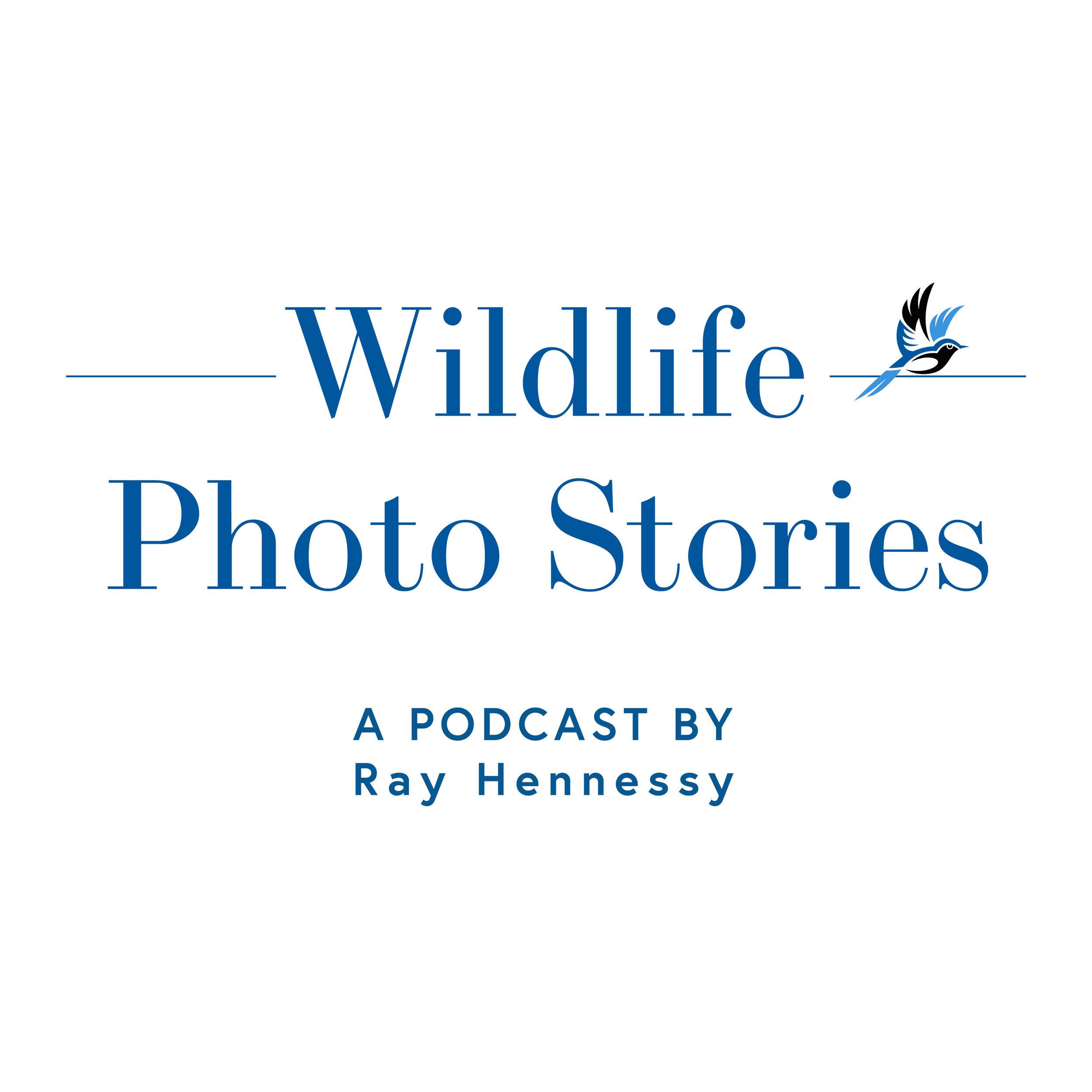 WIldlife-Photo-Stories-Cover.jpg