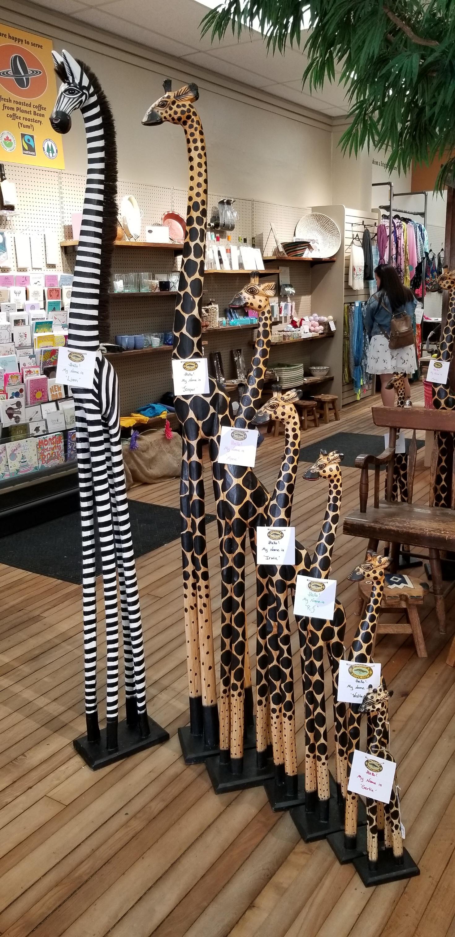 Sproule's Emporium Giraffe Family.jpg