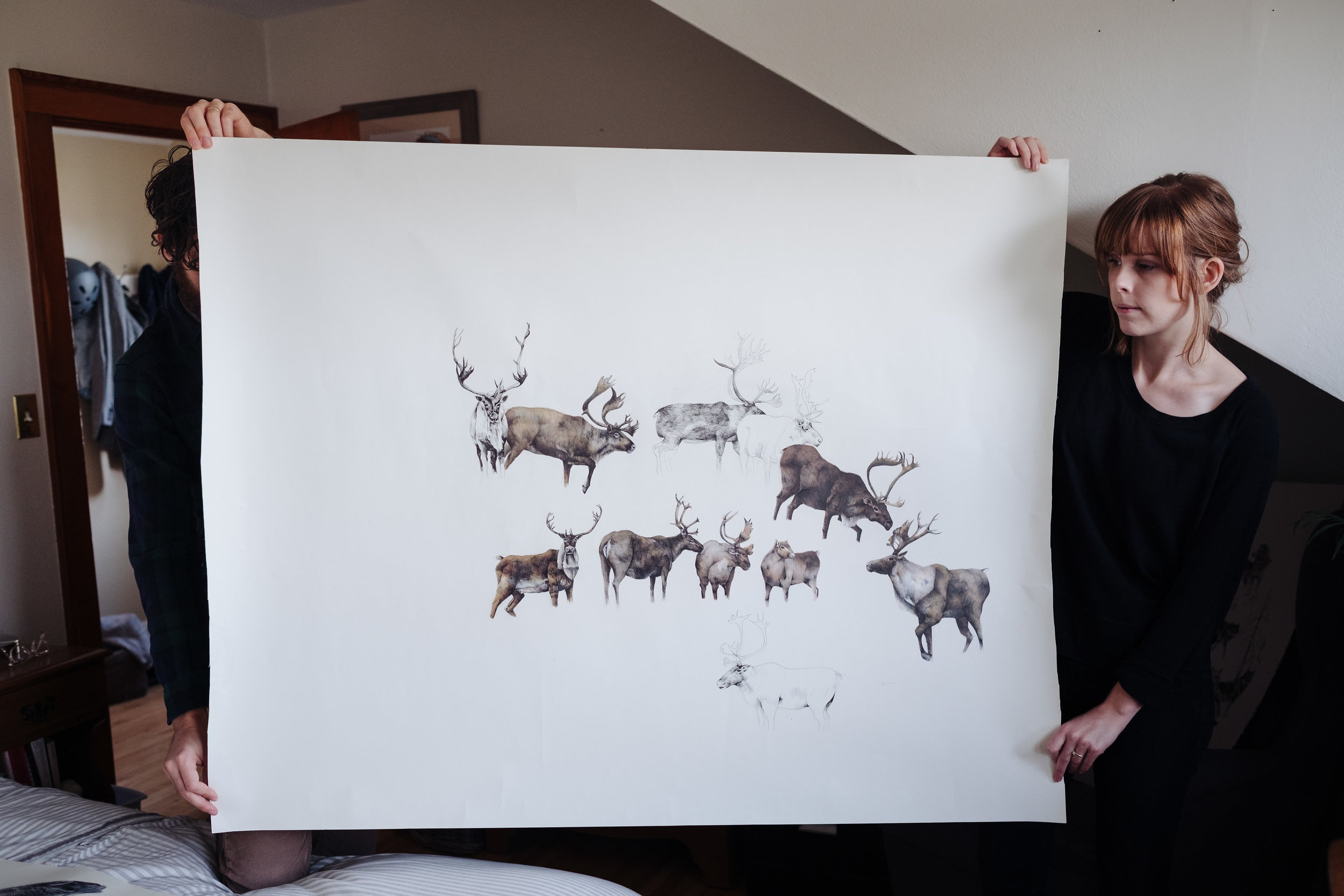Woodland Caribou - 5' x 4'