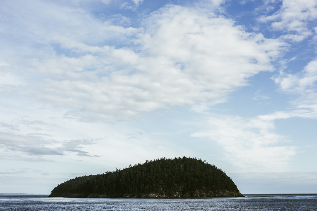Orcas_blog-32.jpg
