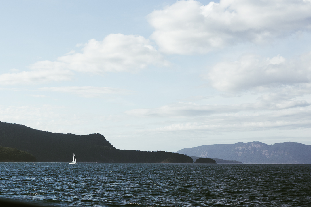 Orcas_blog-33.jpg