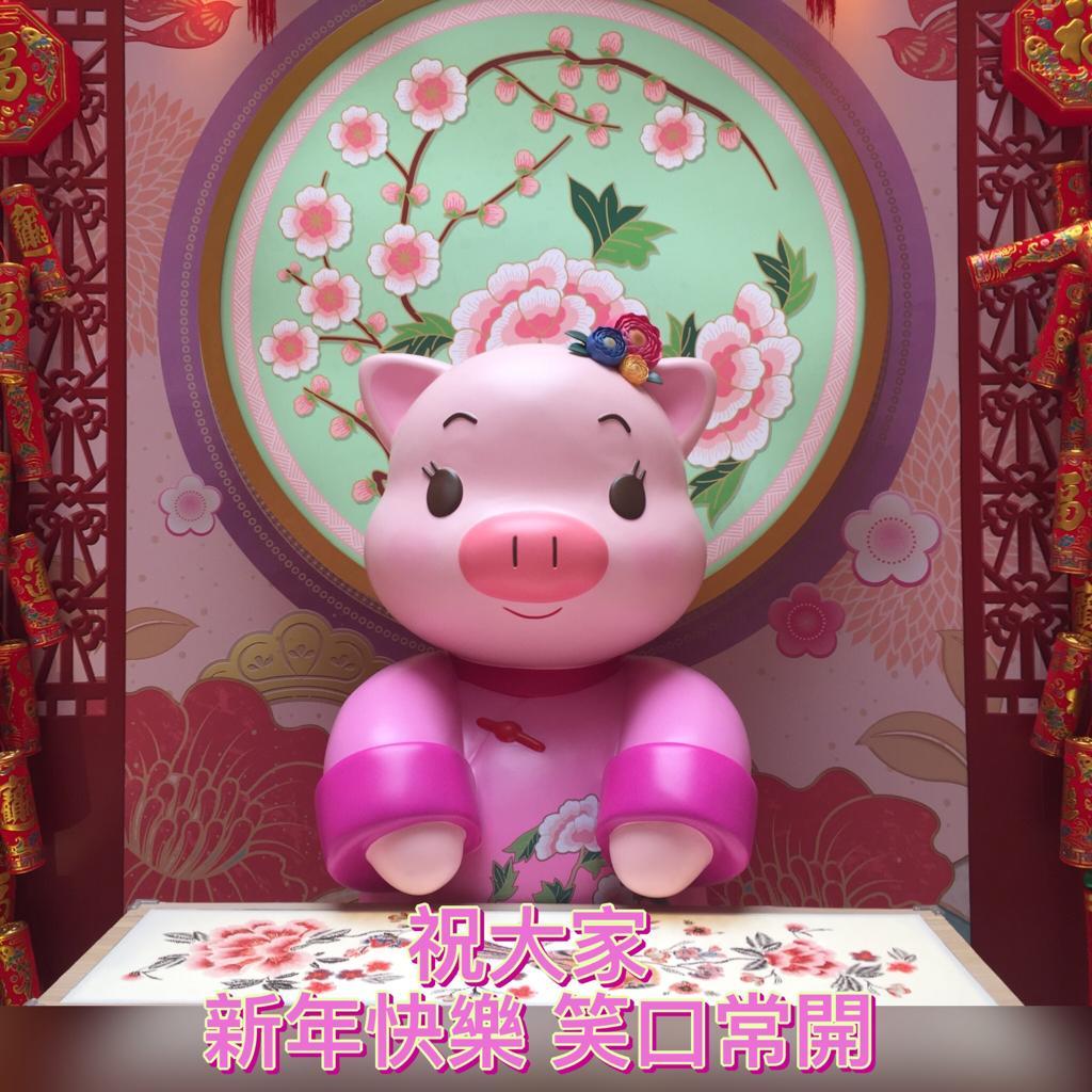 2019-02-05 PIG.JPG