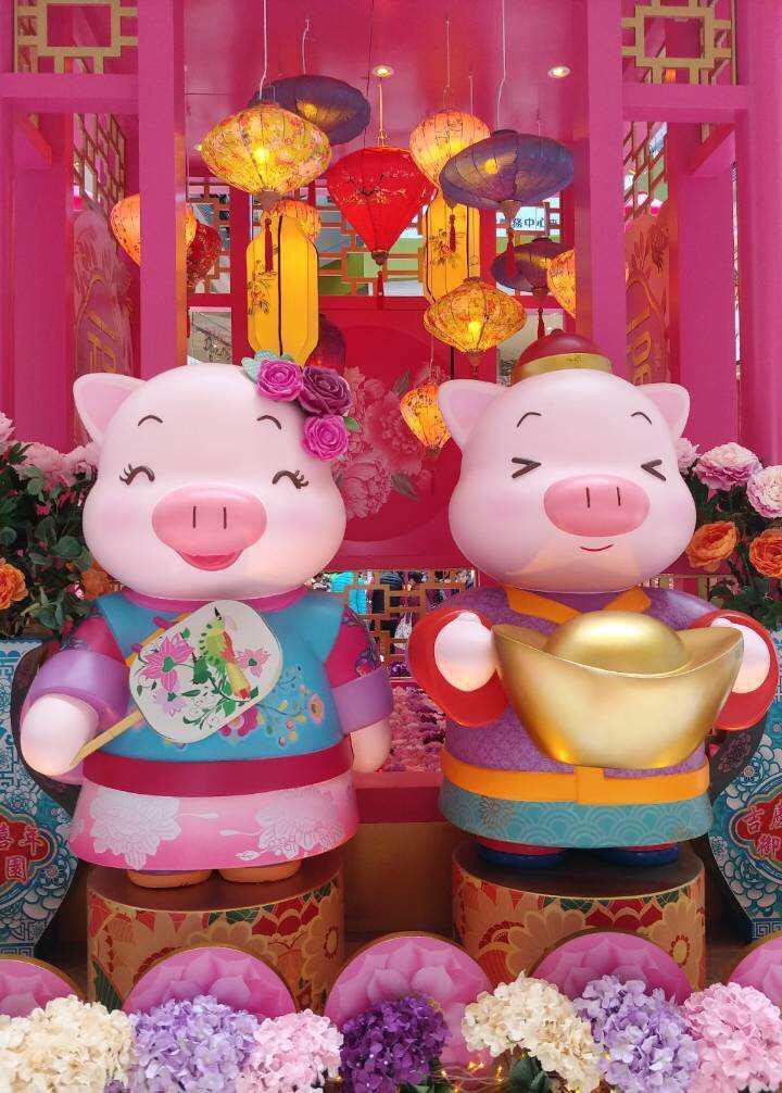 2019-02-05 PIGS.JPG