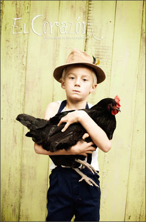 El Gallo Portrait for Little Urban Farmer Sessions by Kim Campbell of Campbell Salgado Studio.