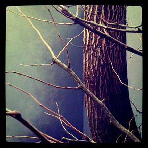 elcorazon-instagram_0565.jpg