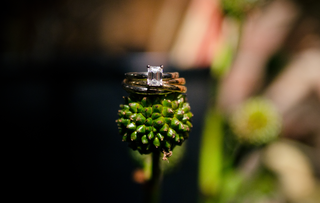 wedding_rings1.png