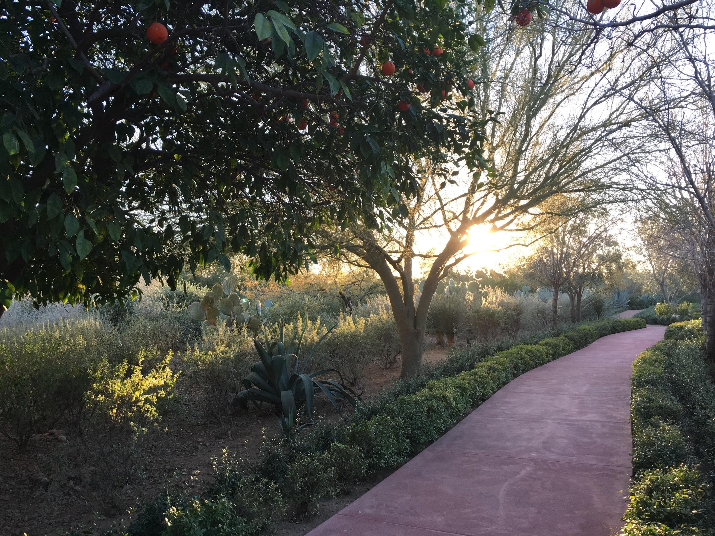 Desert light part 1. (El Chorro)