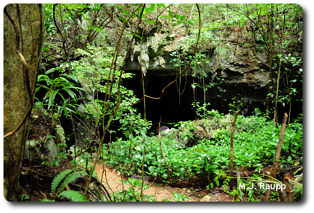 Is this limestone cavern an entrance to Xibalba?