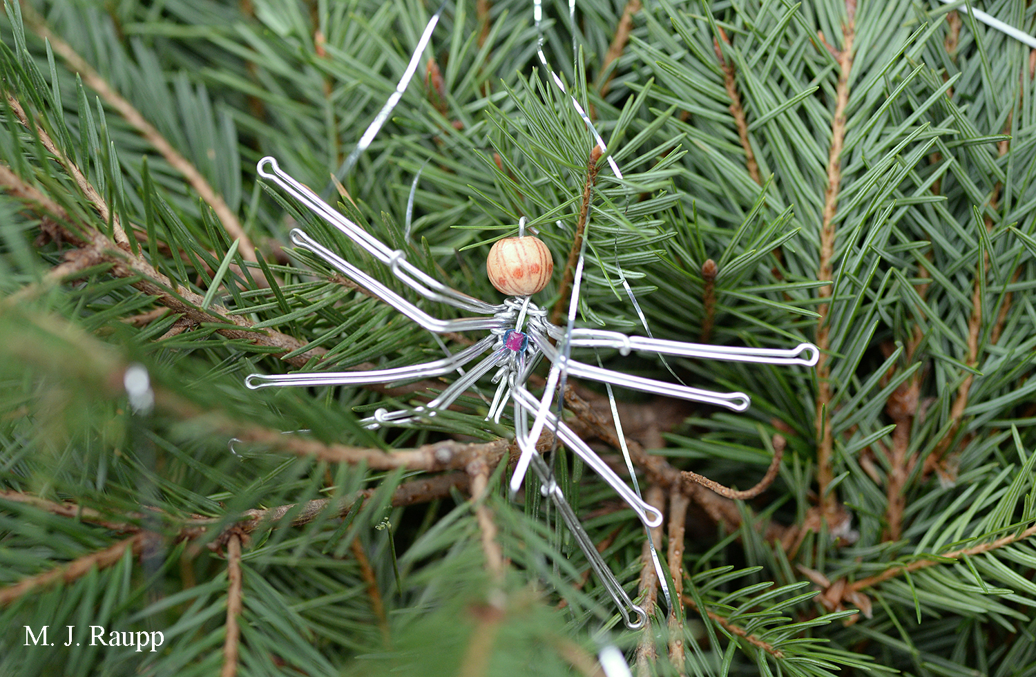 It's no surprise that the Bug Guy has a spider ornament on his Christmas tree.