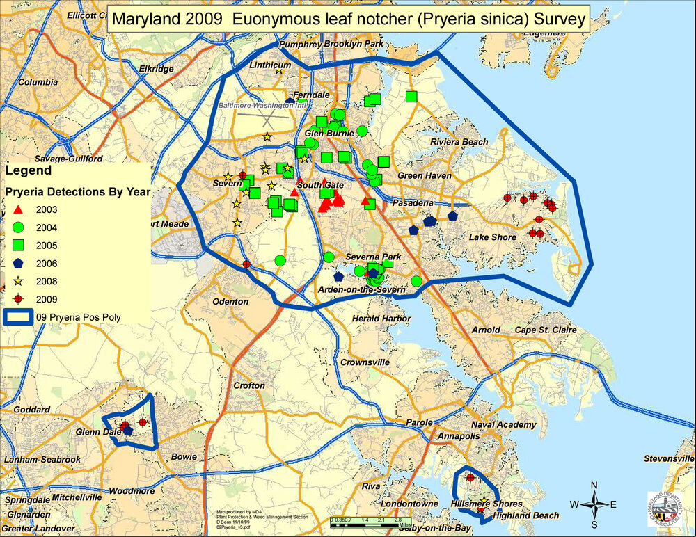 In 2009, surveys conducted by the Maryland Department of Agriculture discovered euonymus leaf-notcher in Anne Arundel and Prince Georges Counties in Maryland. Image credit: Maryland Department of Agriculture