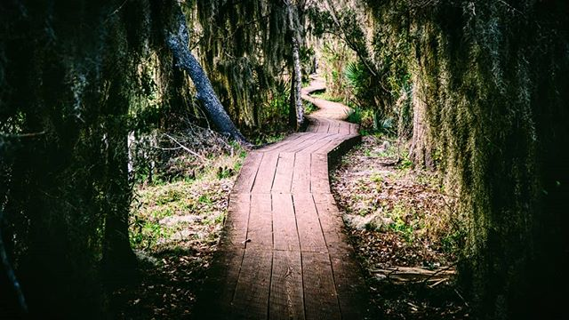 The long roads of life. 😁✌ #TellAStoryAlongTheWay  #LifeTold #MyLifeTold