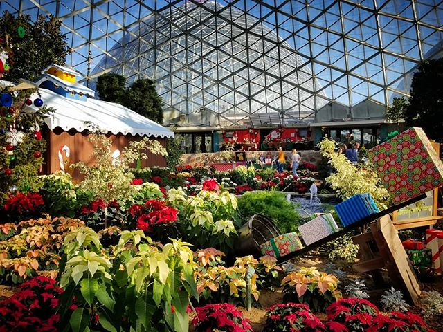Holidays at the Domes!  Milwaukee Spring looks better from the inside. 😁🤗 #Visit #Locations #SightSee #TravelUSA