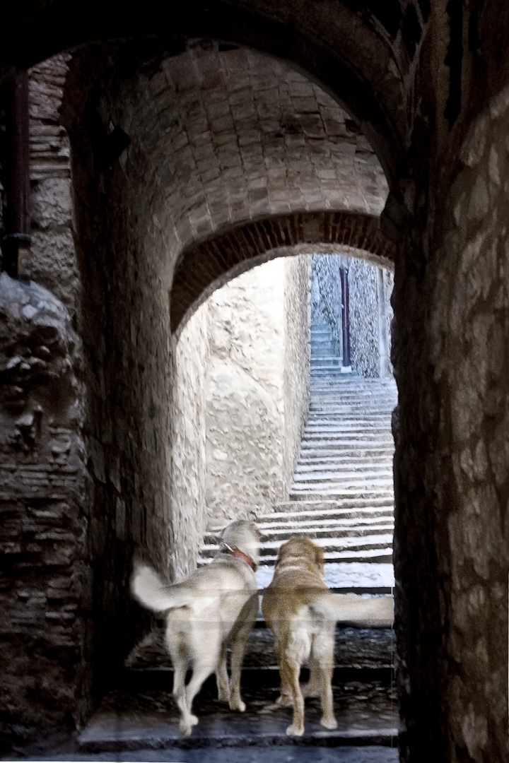 017_spain arch with steps.jpg