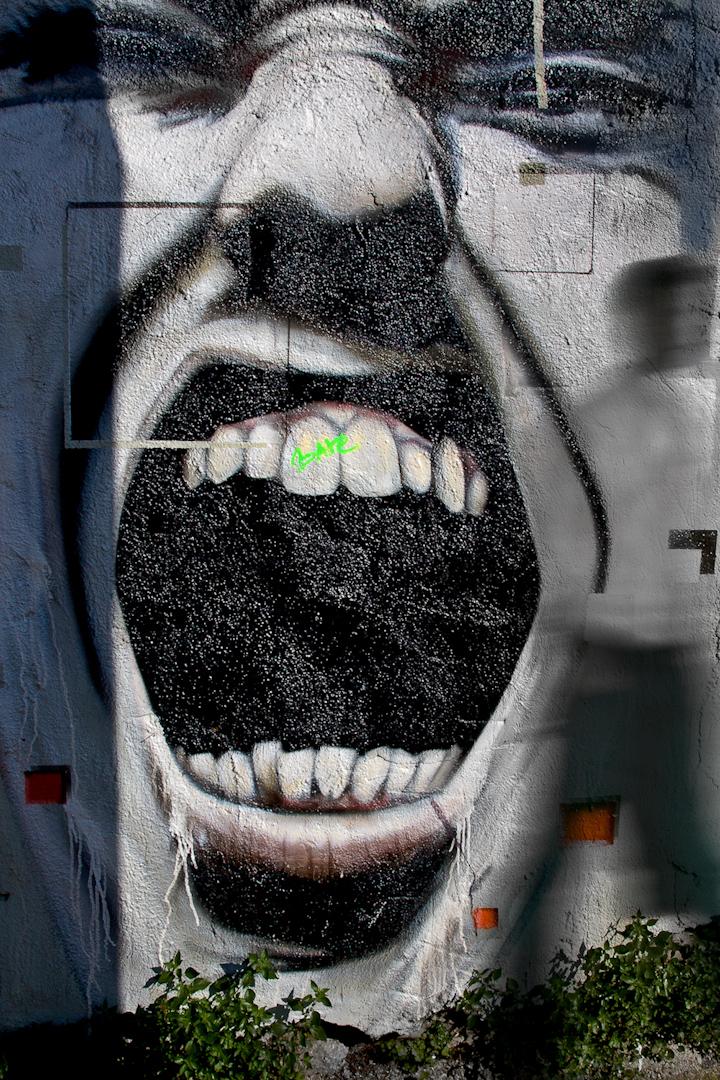024_spain mouth grafitti.jpg