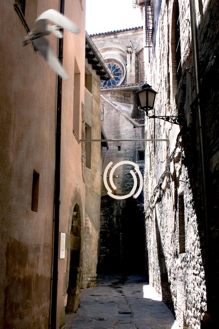 025_spain alleyway circle and bird.jpg