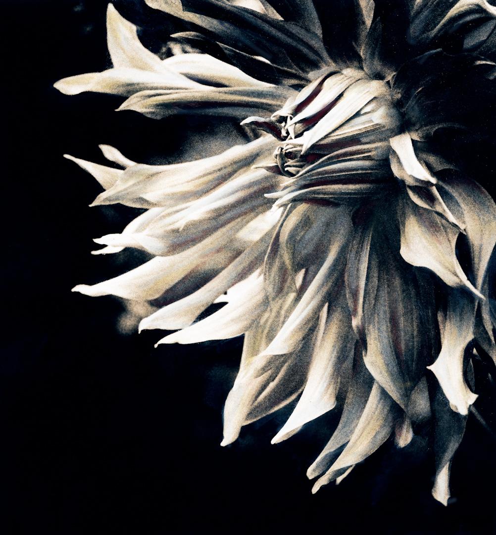 026_flower detail-2.jpg