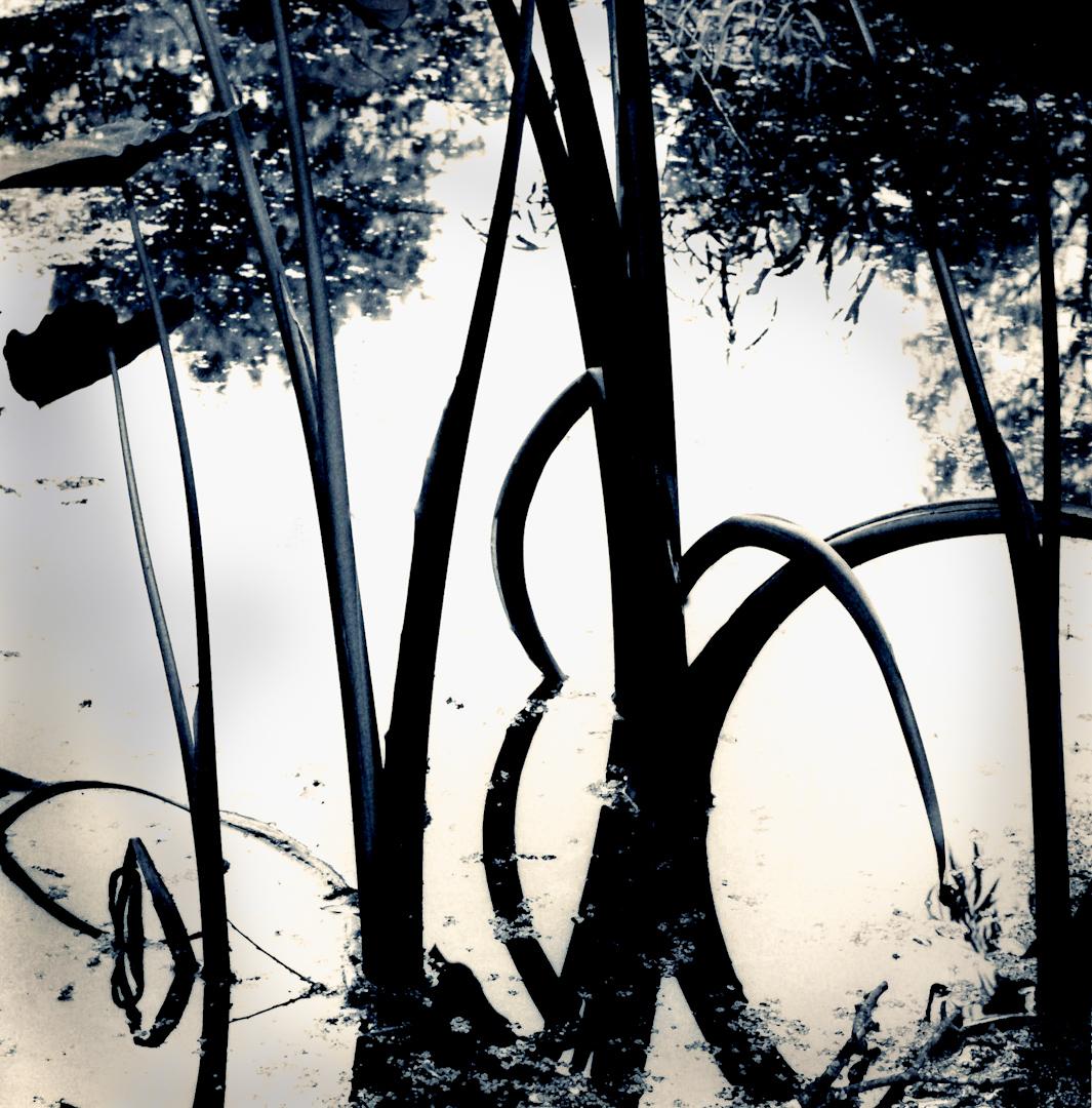 034_mississippi river my spot june 2012-6.jpg