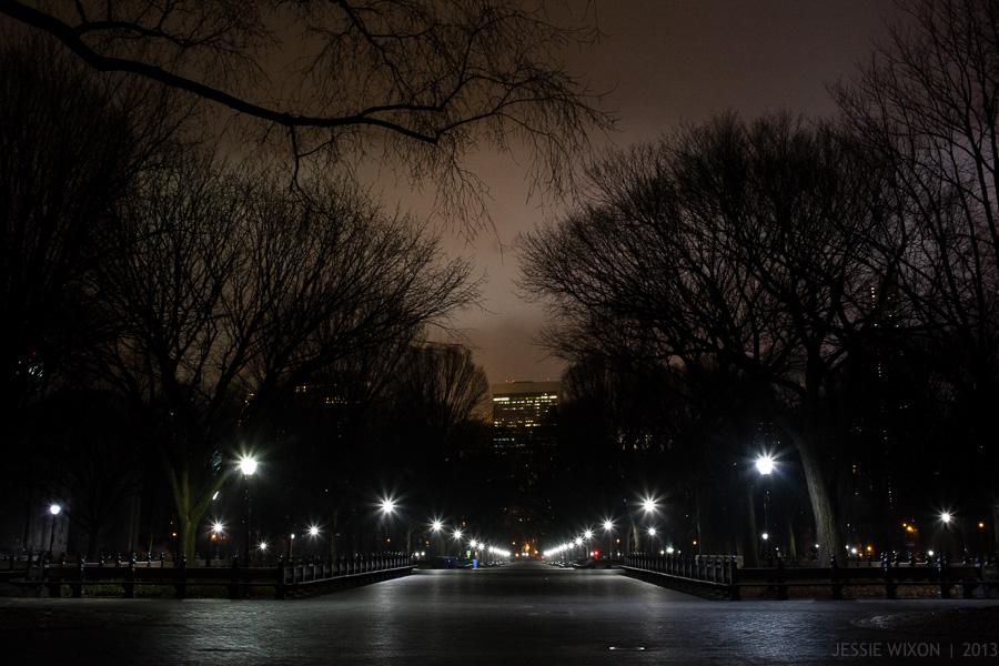 artificial light1.jpg
