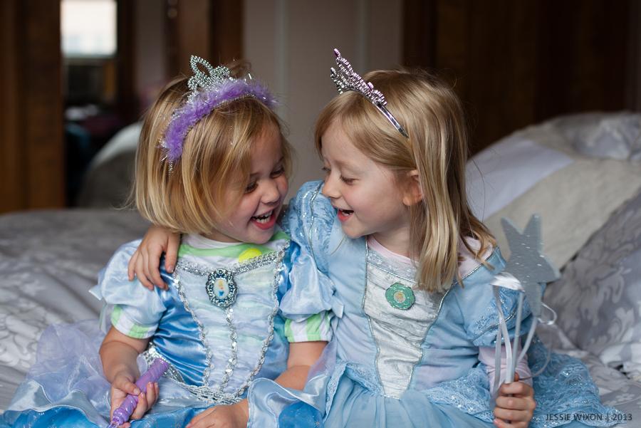 165/365   Cinderella sisters