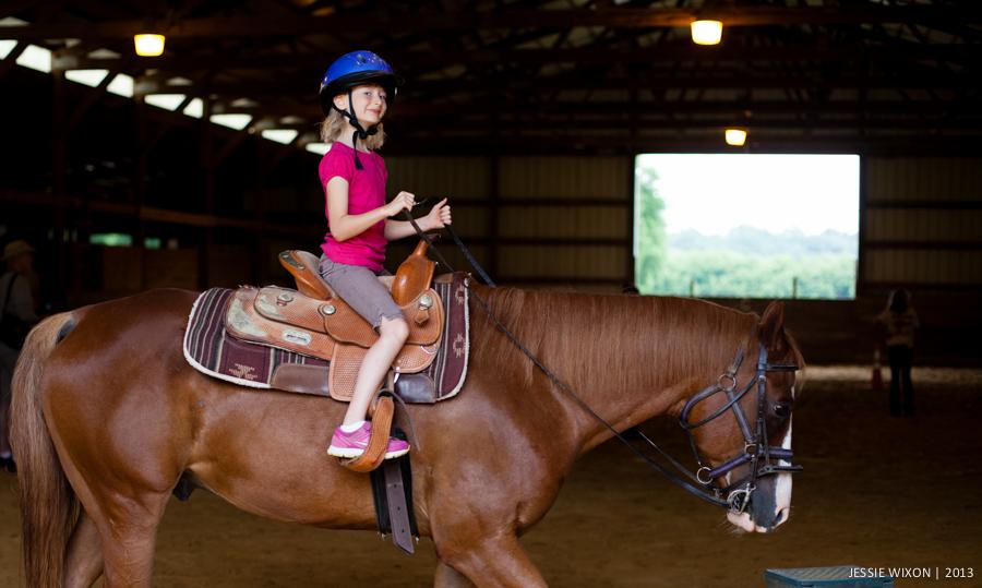 horse-10.jpg