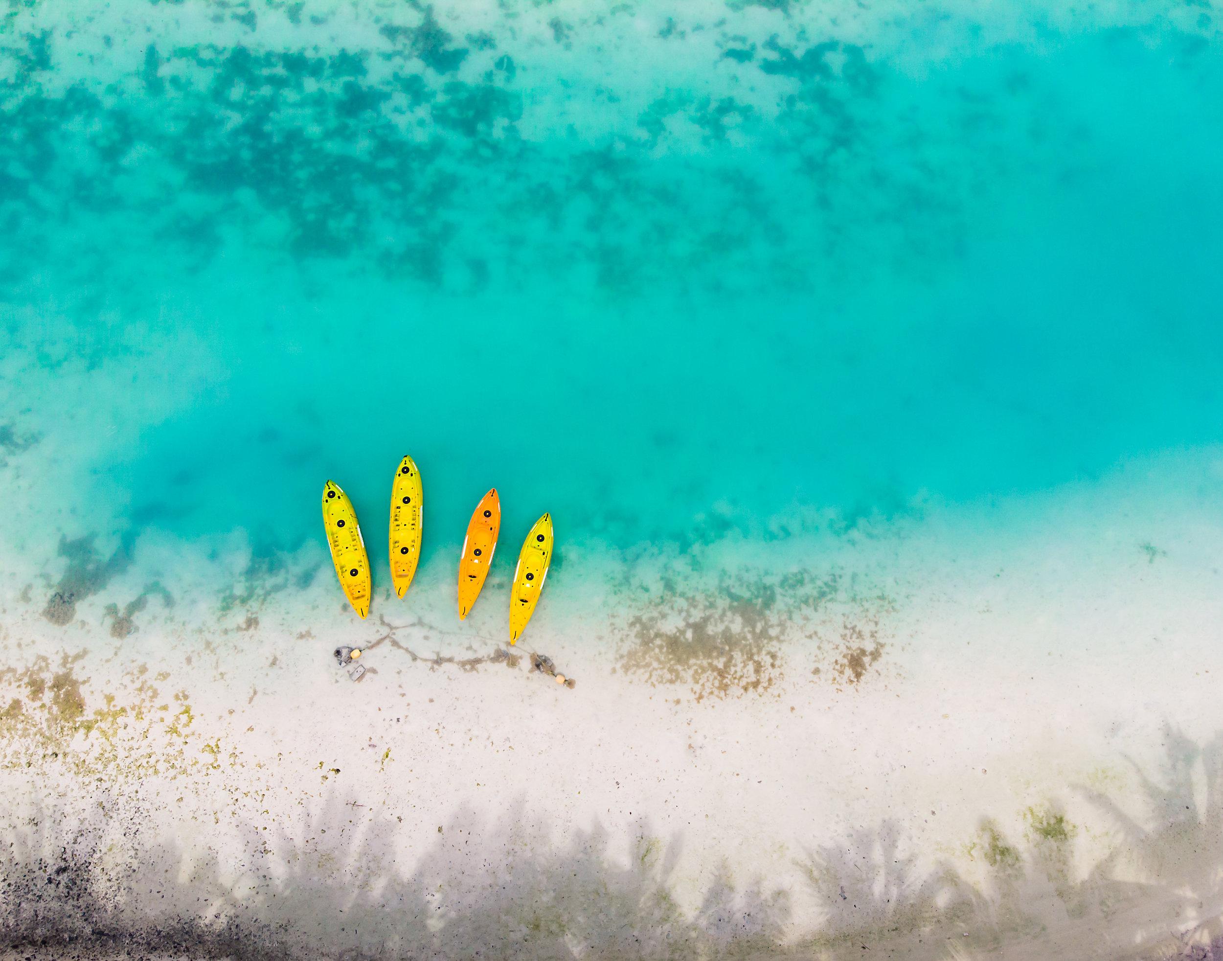 CookIslandsHewitt-2.jpg