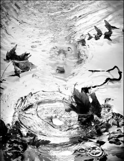 Water Series #58 (2000)