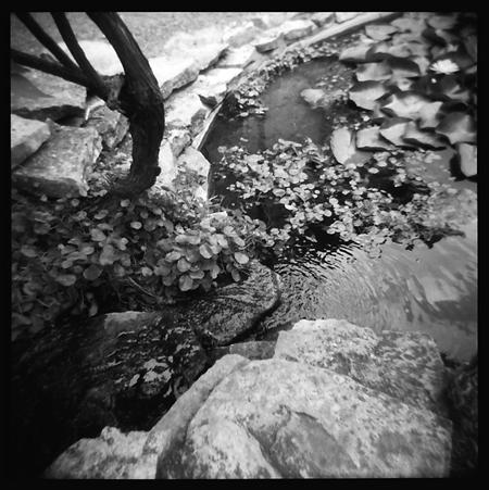 Narrow Streams