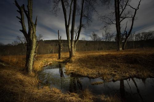 Creek Near Slide Mountain, Ulster County, New York