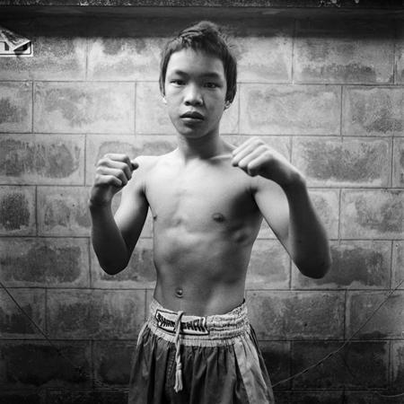 Young Boxer Posing