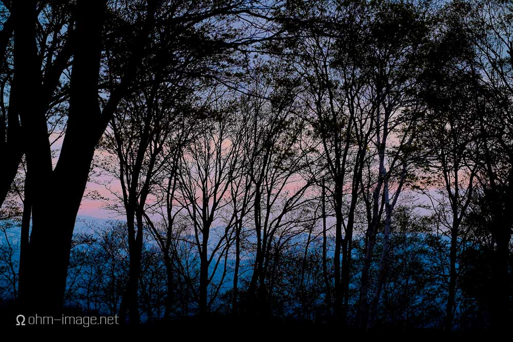 Sundown silhouette and colours