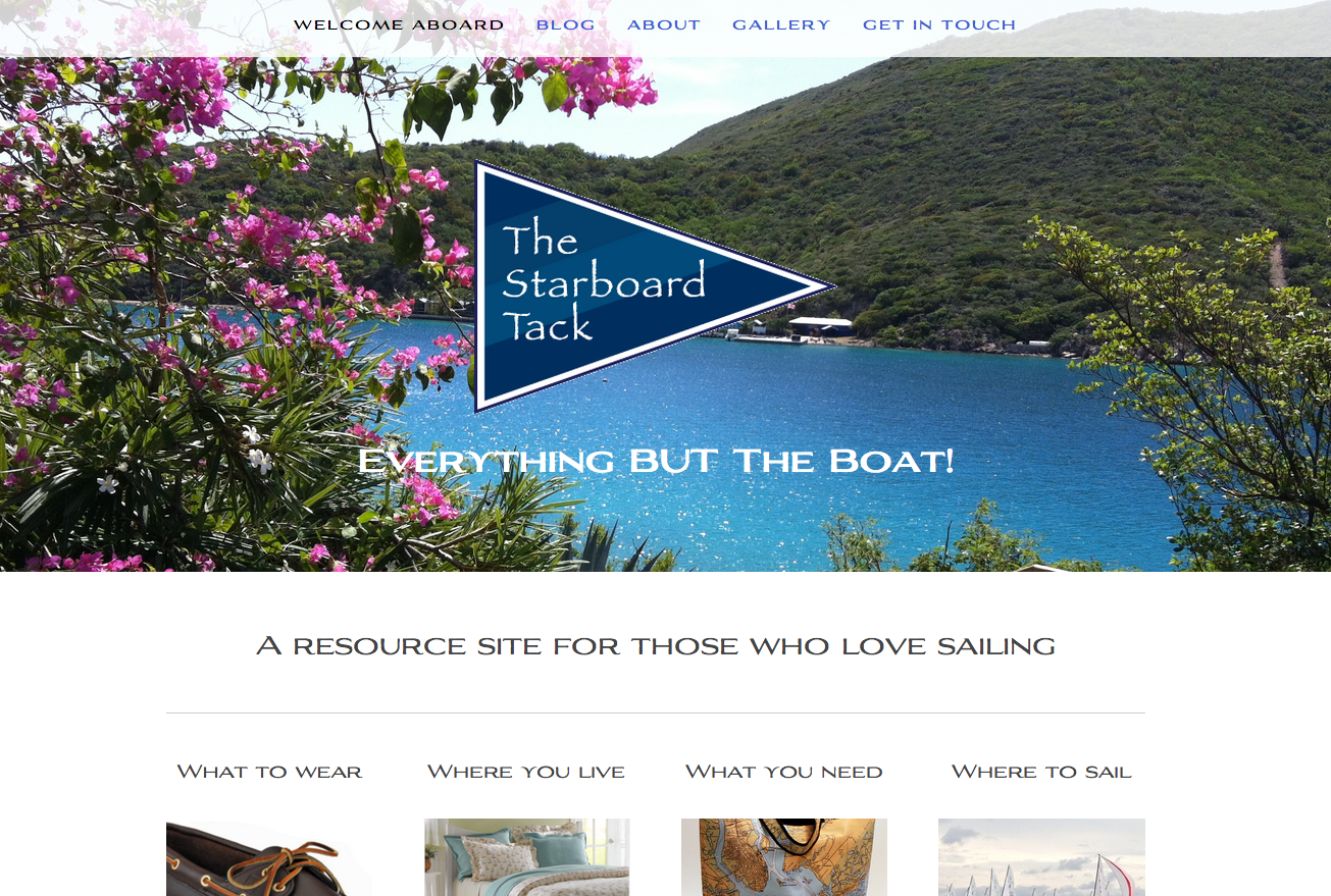 squarespace-devlin-template-website-example.png