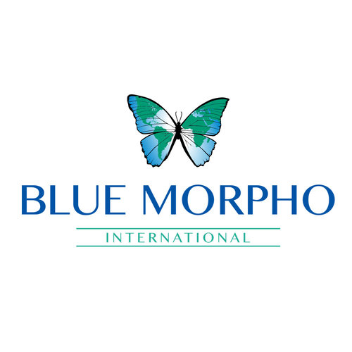 Blue-Morpho-Logo.jpg