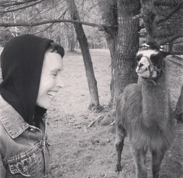 Hanging out with Oblama the llama at Beaverwood Farm.