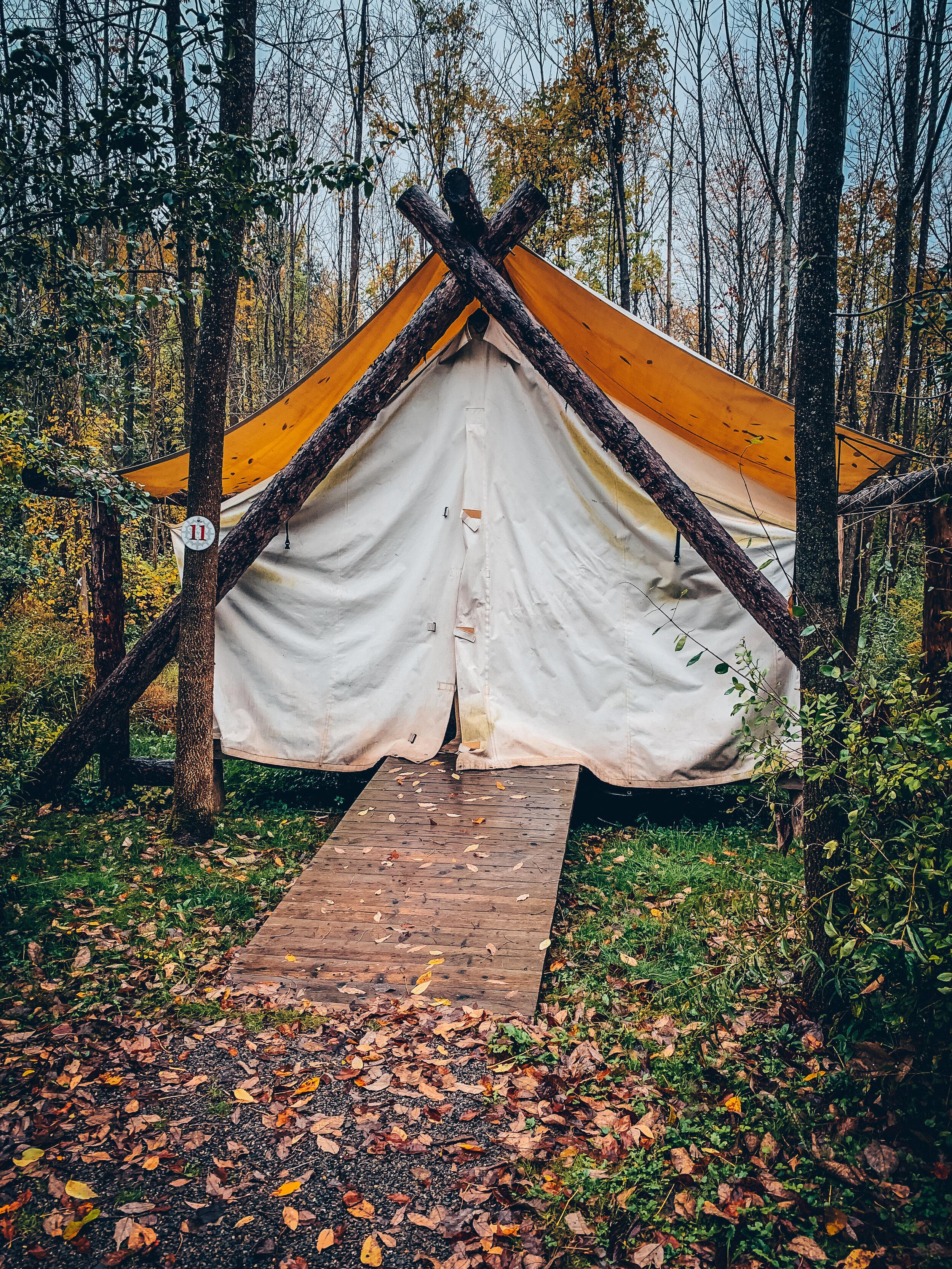 Firelight camps, Ithaca, NY / 2019