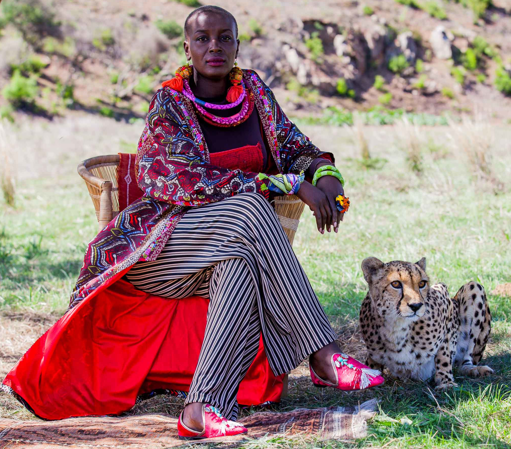 philippa cheetah bush.jpg