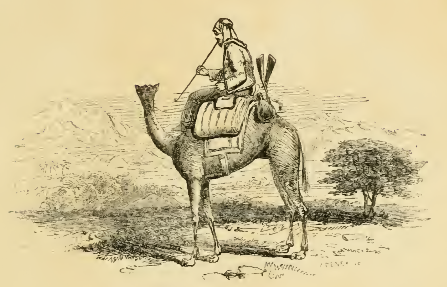 From George Melley's  Khartoum, and the Blue and White Niles  (1852)